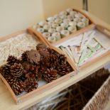 Cocoon Childcare - Pine cones and other wooden toys